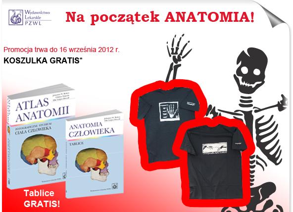 anatomia3_01.png